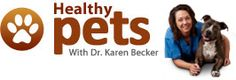 Mercola Healthy Pets. The Veterinary Practice News article linked above discusses just two of literally dozens of supplements that can be offered to dogs and cats with cancer. For the sake of your fur-baby, do your research. It's your dog, not your Vet's!