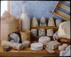 Éventail de spécialités fromagères : fromage de chèvre, le Tricorne de Marans, la Jonchée, la Caillebotte| Charente-Maritime Tourisme #charentemaritime | #fromage | © Jacques Villégier