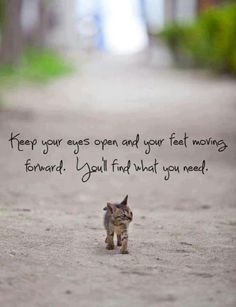 Keep your eyes open and your feet moving forward. You'll find what you need. Motivational quotes on PictureQuotes.com.