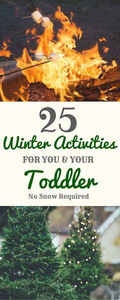 25 Winter Activities for You & Your Toddler - The Nashville Mama - 25 Winter Activities for you and your toddler. Both indoor and outdoor. No snow required! Winter Activities For Toddlers, Nanny Activities, Craft Activities For Kids, Christmas Activities, Toddler Activities, Outdoor Activities, Kids Crafts, Nature Activities, Craft Ideas