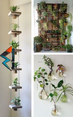 Pin by Michellepape on Haus in 2019 | Pinterest | Interior garden, Indoor garden and Garden « NK