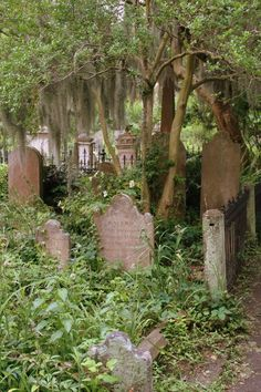 The Carpetbagger: The Cemetaries of Charleston, SC: The Kingdom by the Sea Old Abandoned Buildings, Abandoned Places, Charleston South Carolina, Charleston Sc, Places To Travel, Places To See, Old Cemeteries, Graveyards, Southern Gothic
