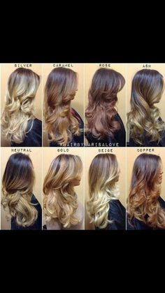 I love the rose one! It's hard to want to keep your own hair dyed and want another one at the same time. Hard decision I love brown + ombre