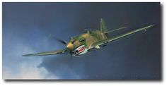 AVIATION ART HANGAR - Tiger by Jack Fellows (P-40)