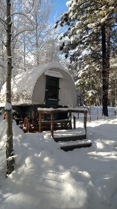 Winter wonderland at the High Desert Museum in Bend