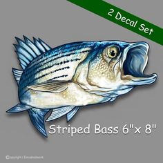 Large Size Vinyl Sticker Decal Crappies for Truck Car Cornhole Board