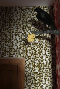 Timorous Beasties Wallcoverings - Wild Honey Bee Allover  You might like this textile design company.