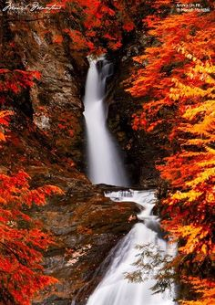 This snow covered waterfall is part of the beautiful scenery in Waterton Lakes National Park located in Alberta, Canada. Waterton Lakes National Park is a UNESCO World Heritage Site & Biosphere Reserve, so it is protected land. Beautiful World, Beautiful Places, Beautiful Pictures, Waterfall Scenery, Waterton Lakes National Park, Autumn Scenes, Les Cascades, Seen, Beautiful Waterfalls