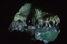 Sea Lions Cave, Florence, Oregon this place was so neat to see. I would love to take hubby here one day Beautiful Places To Visit, Oh The Places You'll Go, Places Ive Been, Vacation Places, Vacation Ideas, Vacations, Oregon Road Trip, Road Trips, Florence Oregon