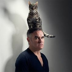 Morrissey and his cat are wearing the same facial expression.
