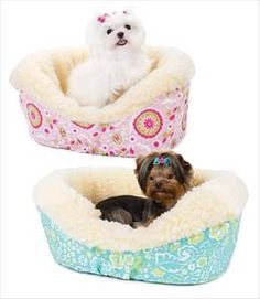 Best Friends Forever Small Dog Couch