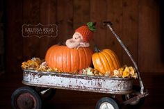 October shoot in wagon with pumpkin