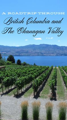 A Roadtip trough BC and The Okanagan Valley
