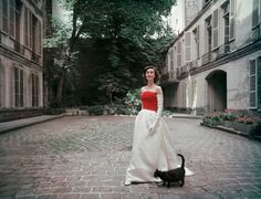 """1955 """"Prettiest dress in Paris"""" Balenciaga's untrimmed Faille and Satin gown is admired by a wandering feline."""