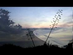 """Jules Massenet """"Thaïs"""" Meditation Itzhak Perlman - Violin Lawrence Foster - Conductor The Abbey Road Ensemble Photography and filming by myself at Praia da R..."""