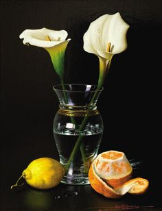 Realistic Still Life Paintings By Spanish Artist Javier Mulio