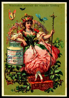 "https://flic.kr/p/8zwtUW | Liebig S133 - Flower Girls 1883 | Liebig's Meat Extract ""Flower Girls"" French issue, 1883"