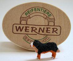 Christian Werner Bernese Mountain Dog in Gift Box