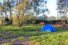 How to choose a campsite like this - what to look for: tips for beginners