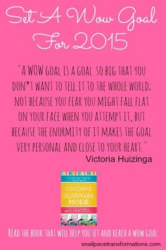 Set a wow goal for 2015. This book will help you set goals and reach them. Go from living in the day to day as overwhelmed to living day with intention and success. setting goals, goal setting #goals #motivation