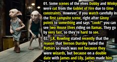 25 Magical & Mysterious Facts About Harry Potter – Part 4 Harry Potter Parts, Harry Potter Magic, Harry Potter Quotes, Harry Potter Movies, Weird Facts, Fun Facts, Random Facts, Facts About Universe, Elf Quotes