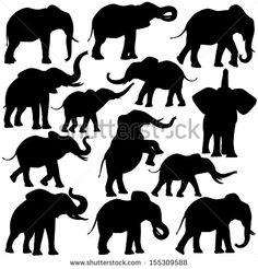 Set of editable vector silhouettes of African elephants in various poses