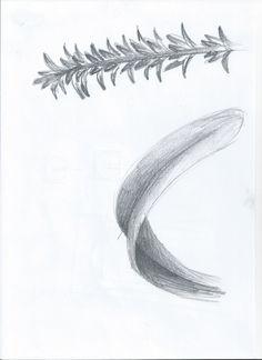 Sketch_Kelp10