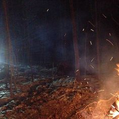 Quad lights in the woods from the guys looking for more fire wood