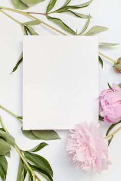 Blank card with pink flowers by Alessio Bogani - Card, Copyspace - Stocksy United Flower Background Wallpaper, Cute Wallpaper Backgrounds, Flower Backgrounds, Cute Wallpapers, Collage Background, Theme Background, Wholesale Greeting Cards, Instagram Frame Template, Flower Frame
