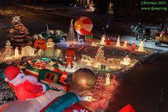 Alek's Christmas Lights and Decorations Outdoor Decorations, Light Decorations, Outdoor Christmas, Christmas Tree, Decorating With Christmas Lights, Beautiful Christmas, Outdoor Lighting, Yard, Holiday Decor