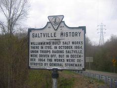 saltville va -