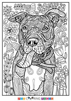 """Free printable American Pit Bull Terrier coloring page """"Tera"""" available for download. Simple and detailed versions for adults and kids."""