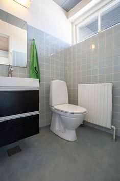 Cement, Bathroom Renovations, Toilet, Bathtub, Standing Bath, Flush Toilet, Bath Tub, Litter Box, Toilets