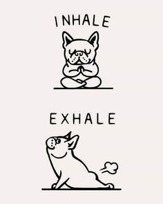 Inhale Exhale Frenchie Art Print by Huebucket - Animals / Babies / Cuten . - Inhale Exhale Frenchie Art Print by Huebucket – Animals / Babies / Cuten …, - Funny Quotes, Funny Memes, Funny Positive Quotes, Life Quotes, Quotes Inspirational, Funny Illustration, The Words, Cute Drawings, Framed Art Prints