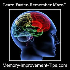 Should you take vitamins for memory improvement?  This page provides a quick primer about the facts.