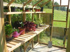 greenhouse shelves love the upper shelf