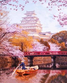 got to visit Japan in the spring where the Sakura (cherry blossoms) bloom for a few weeks. They come and go extremely quickly so plan wisely! Go To Japan, Visit Japan, Wonderful Places, Beautiful Places, Cherry Blossom Japan, Cherry Blossoms, Himeji Castle, World Cities, Turismo