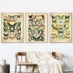 Cheap Paintings, Home Decor Paintings, Canvas Wall Decor, Wall Art Decor, Canvas Art, Wall Art Pictures, Canvas Pictures, Butterfly Canvas, Nordic Art