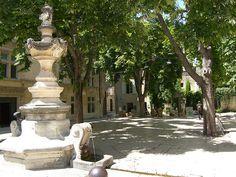 Saint Remy de Provence Le charme de la provence résumée dans cette petite ville, au pied des Alpilles, avec ses rues étroites du centre historique, ses petites places ornées de fontaines, ses boutiques et ses galeries d'art.