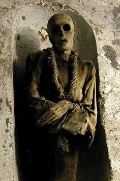 Mummy....Dia de los Muertos... a continent away (wow)..