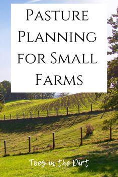 12 Fence Ideas Farm Pasture Fencing