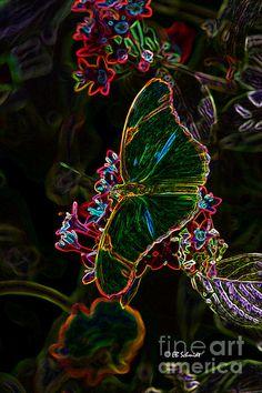 """""""Butterfly Garden 16 - Julia Heliconian"""" by EB Schmidt"""