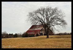 Barn in Williamson County TN