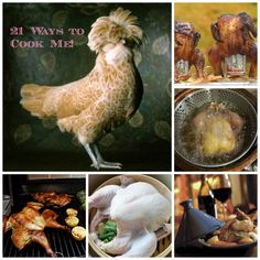 Community Post: 21 Ways To Cook A Whole Chicken  http://www.buzzfeed.com/jeffreysaintjeffrey/21-ways-to-salivate-over-a-whole-chicken-dyr5#.laWGLzYGb