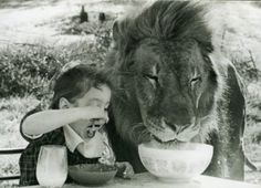 a boy and his lion