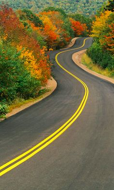 I like how the road lets your eyes go to the back of the picture and through the trees. Beautiful Roads, Beautiful Landscapes, Beautiful Places, Nature Photography, Digital Photography, Photography Backdrops, Photography Classes, Photography Hashtags, Photography Jobs