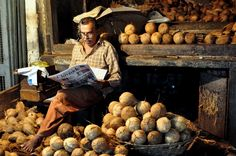 A coconut vendor catches up on news while waiting for customers