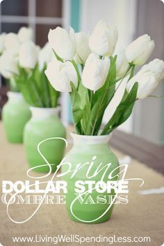 Ombre Vases. Cute & thrifty DiY project using dollar store vases.  Change the color to make it work for different seasons.  So cute!