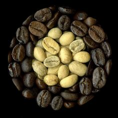 Starbucks& New, Flavorless Coffee Beans. La Coffee, Coffee Snobs, I Love Coffee, Coffee Break, Coffee Cups, Coffee Talk, Coffee Corner, Manhattan Transfer, Chocolates