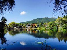 湯布院の名スポット、「金鱗湖」。その美しい名前の響きに魅かれてしまいますね。明治時代、湖の魚の鱗が夕日に輝くのを見て儒学者がつけたんだそうです。  今回は、金鱗湖からめぐるカフェとスイーツの美味しく素敵なショップをご紹介します。